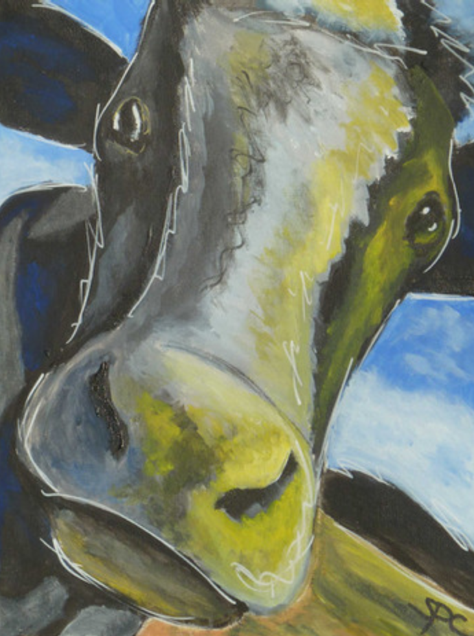 A Cow for Heidi